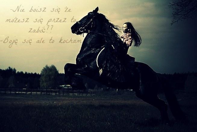 Konie.. Według niektórych są tylko kawałkiem mięsa Ale inni uważają je za cały świat