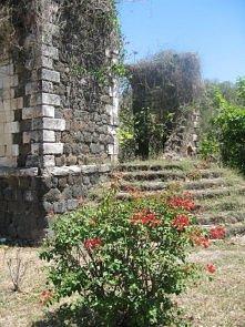 Ruiny karaibskiej posiadłości na starej plantacji cukru na Jamajce - Montego ...