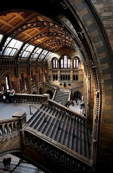 Natural History Museum, Londyn, Anglia