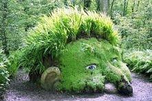 głowa w ogrodzie