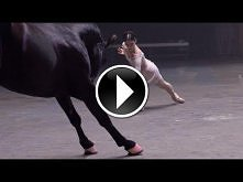 *** taniec z koniem ***