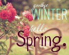 Hello Spring:)