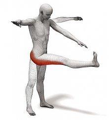 ćwiczenie na uda i pośladki