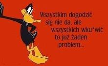 Zlota mysl:)