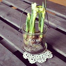 kwiatek na palecie u mnie w pokoju ;)