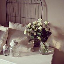kwiatki na komodzie w moim pokoju ;)