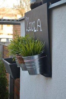 Zioła na balkonie - DIY
