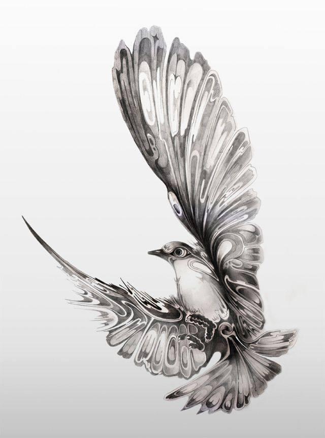 Ptak Na Rysunki Zwierząt Zszywkapl