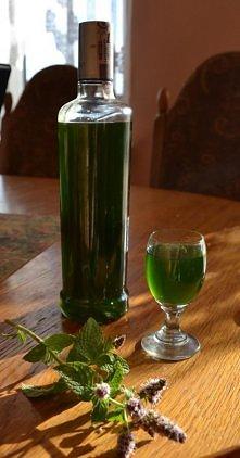 Likier miętowy   Składniki: - dużo liści mięty - 0,5 l spirytusu - 0,5 l wody...