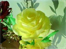 Moje róże z krepiny;]]]