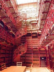 Stara Biblioteka, Holandia