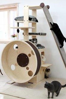 WOOOOOW ! :O *.* <3 Raj dla kota !!!!!! Szkoda że nie można tekiego zakupi...