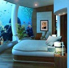 Niesamowity pokój!