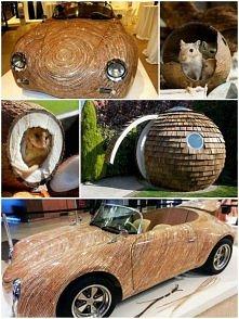 """zadziwiające zastosowania kokosów... czyli """"nuts for coconuts"""" :)"""