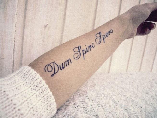 Dum Spiro Spero Dopóki Oddycham Nie Tracę Nadzieji Na