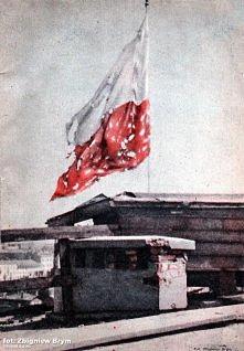 Flaga Polski - zawsze była, jest i będzie w naszych sercach.