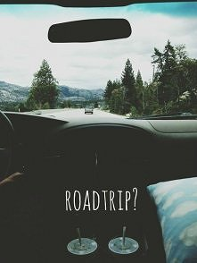 Road trip? ;)