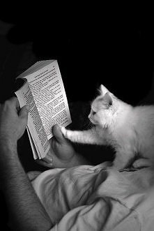 Poranne czytanie w łóżku =) Jakie efektywne sposoby na pobudkę macie?