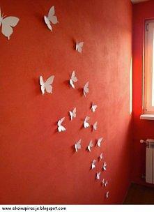 motyle na ścianę
