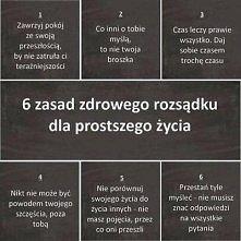 6 zasad :)