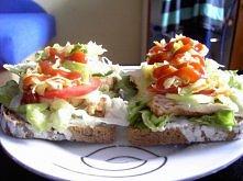 Oszukany hamburger :) 2 kromki żytniego chleba z pomidorem,sałatą,sałatką obiadową,cebulą,sosem czosnkowym,ketchupem,ogórkiem i kurczakiem.