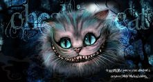Kot z Cheshire :)