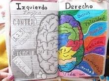 mózg!