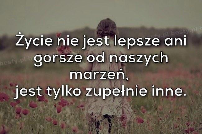cytaty do zdj na Cytaty i zdj   Zszywka.pl cytaty do zdj