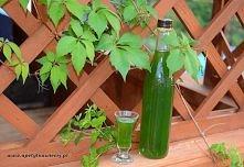 Nalewka z mięty  Składniki:       liście z ok. 10 łodyg mięty     0,5 litra spirytusu     0,75 litra wody     300 g cukru    Liście dokładnie myjemy, umieszczamy w dużym słoiku,...