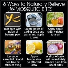 Home Remedies To Naturally Relieve Mosquito Bites