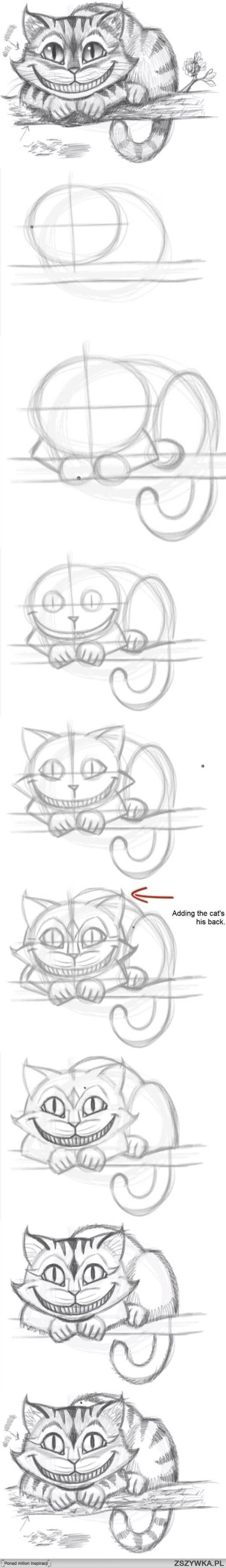 Kot z Alicji <3