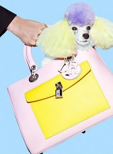 Cukierkowe zdjęcia od domu mody Dior! Głównymi bohaterami są modelka Bette Fr...