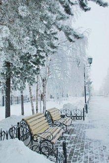 Zima w Central Parku