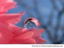 jesienna kropelka
