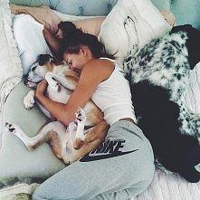 Kto kocha psy? :)
