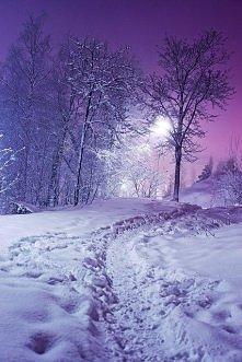 Śnieg w nocy
