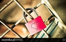 Love ❤ ----->