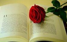 jaka jest wasza ulubiona książka ? ♥