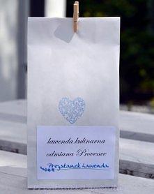 Lawenda kulinarna, odmiana Provence Sprzedawca: Przystanek Lawenda