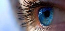 Ludzie o niebieskich oczach...