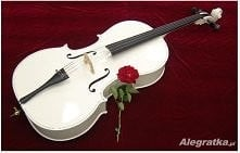 Biała wiolonczela ♥