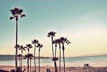 Plaża, lato <3