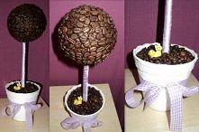 drzewko kawowe, diy ;)