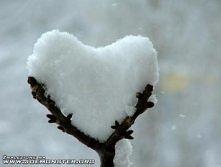 zima cię kocha