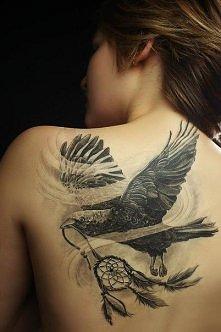 Ptak i łapacz snów