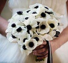 Zimowy bukiet ślubny - zawilec (anemone)