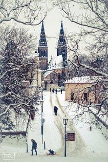 Kościół ŚW.Piotra i Pawła,Vyšegrad,Praga.