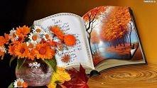Książka kwiat i krajobraz.