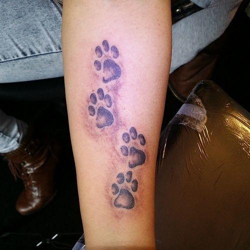 Tatuaż Kocie łapki Na Tatuaże Zszywkapl