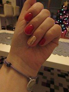moje hybrydy, świątecznie :)